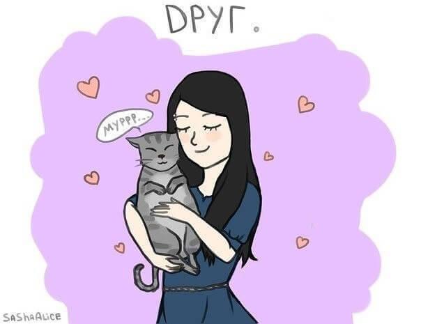 кошка друг человека