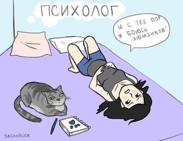 кот психолог