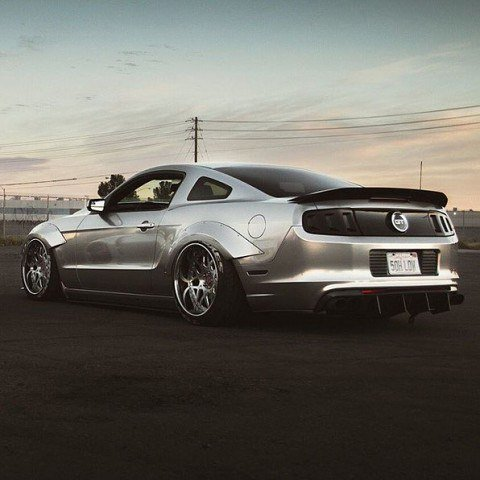ford mustang terminator