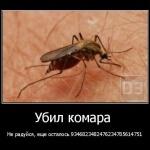 Как лечить укусы комаров на теле