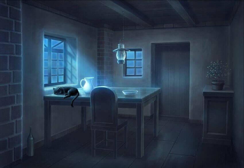 ночьная жизнь кота