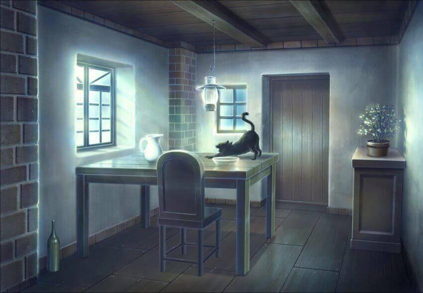 что делает кошка когда её не видят