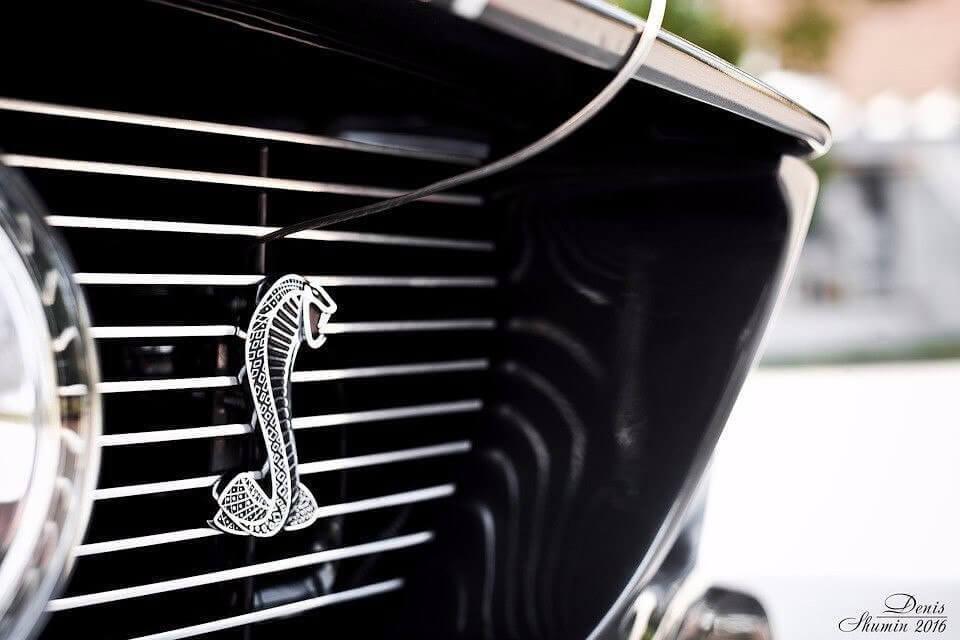 форд мустанг гт 500
