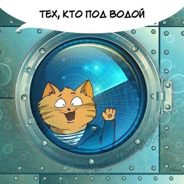 открытки с котиками
