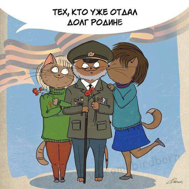 военные котики