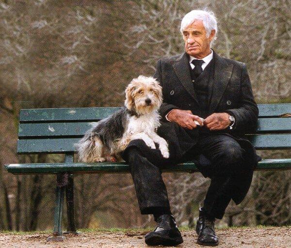 Чем больше узнаю людей - тем больше нравятся собаки