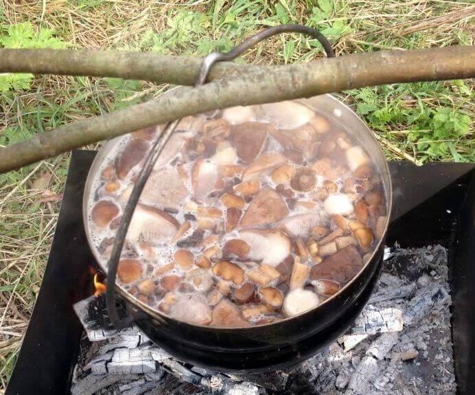 суп из грибов быстрый