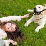 Интересные истории про животных из реальной жизни