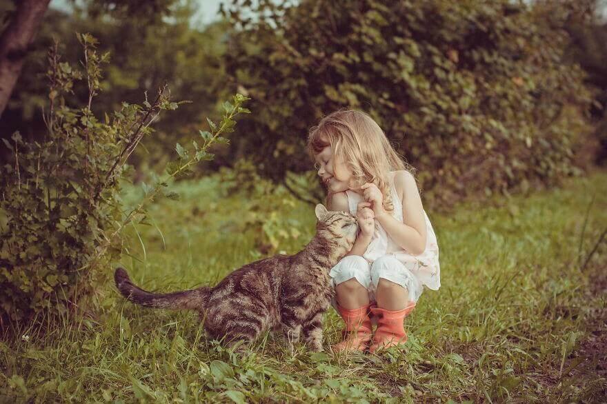 стихи про кошек короткие и красивые