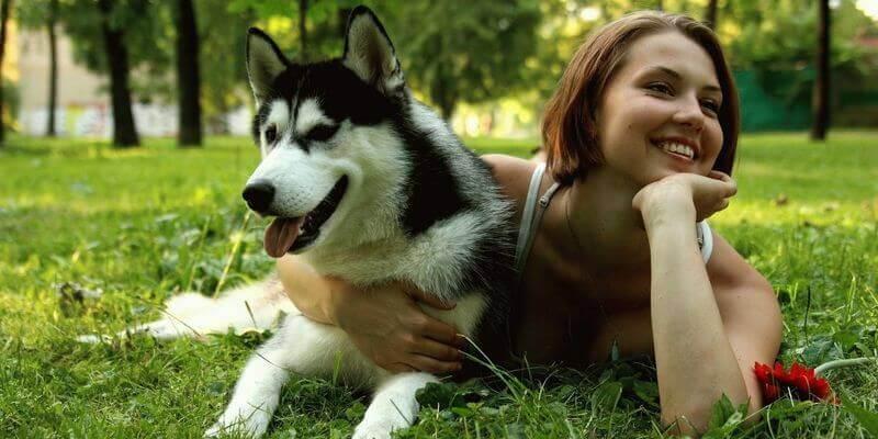 грустные стихи о собаках короткие width=