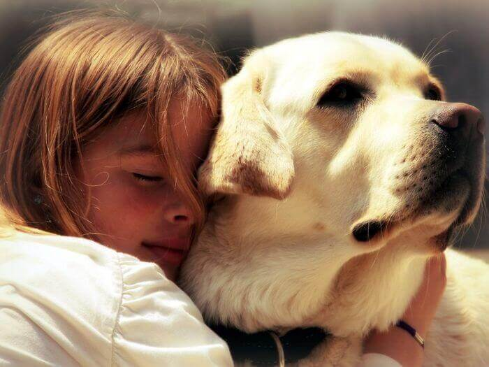 стихи о собаках грустные
