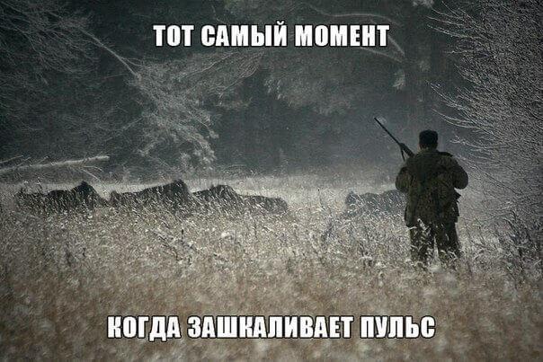 стихи про охоту