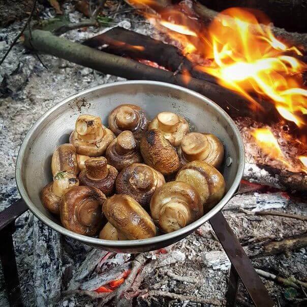 жаренные грибы на мангале или углях