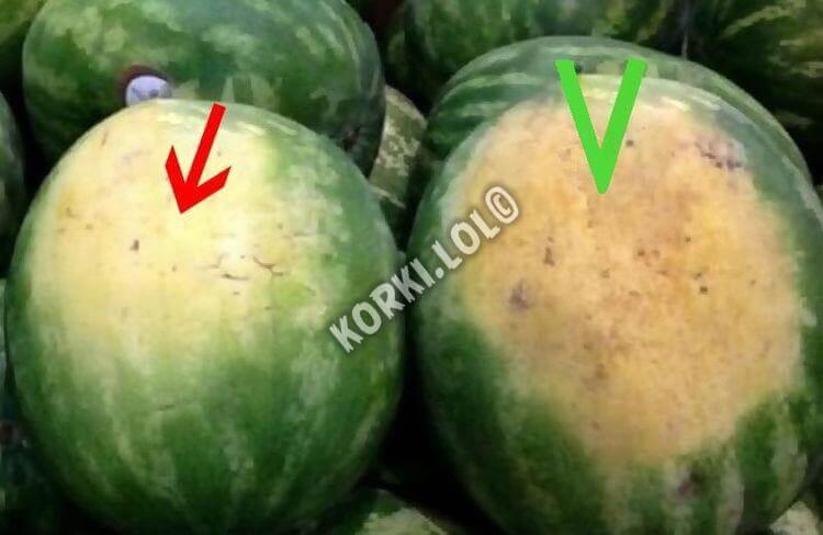 как определить спелый арбуз при покупке