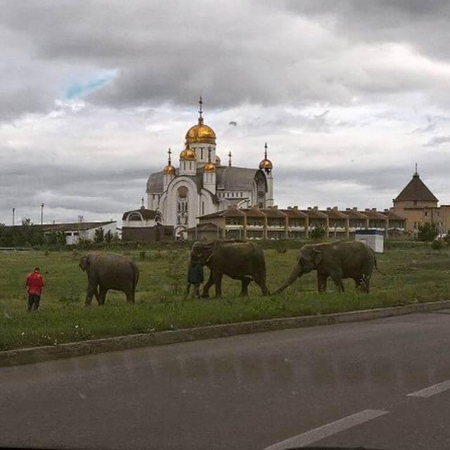 удивительные русские фотографии