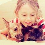 Соотношение возраста собаки, кошки и человека — таблица