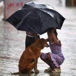 Добрых людей, как всегда, не хватает... Стихотворение