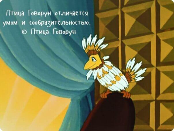 лучшие цитаты из мультфильмов смешные