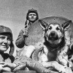 Советские танкисты ВОВ - фото