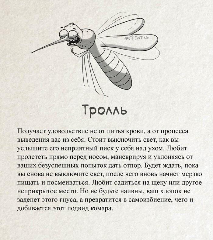 комар в увеличенном виде