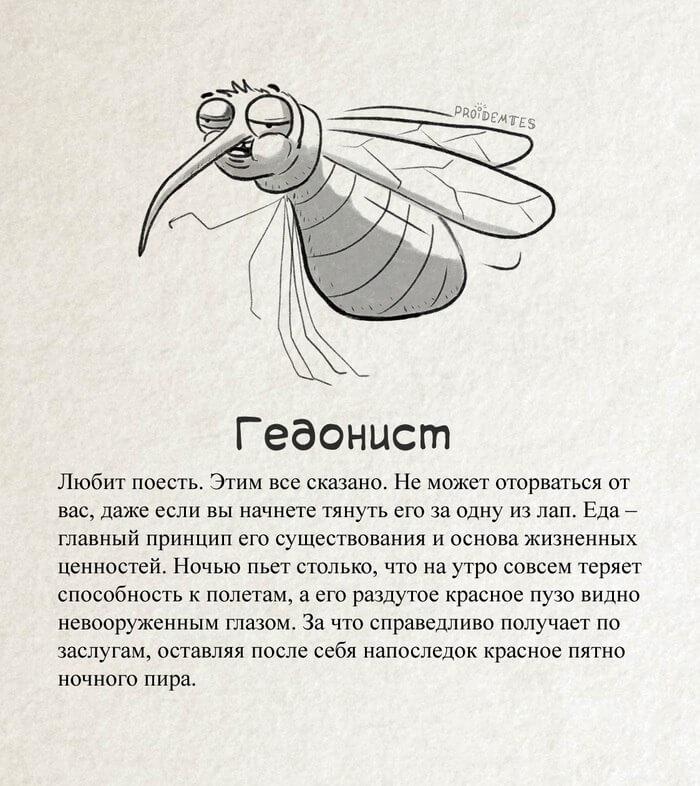 новый вид комара