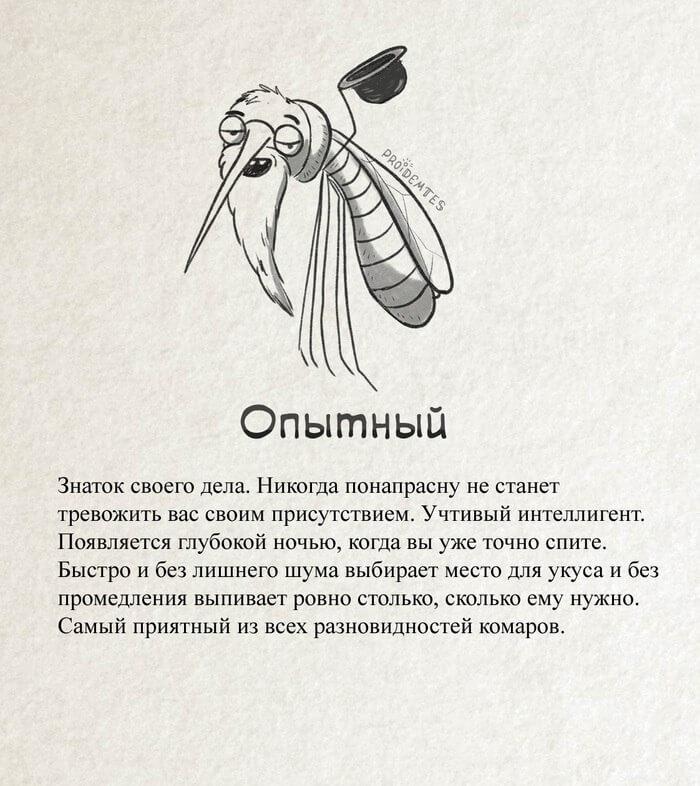 старый опытный комар описание