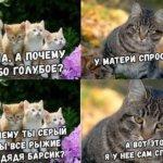 Свеженькие анекдоты посмешней