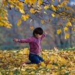 Красивые стихи про осень и об осени