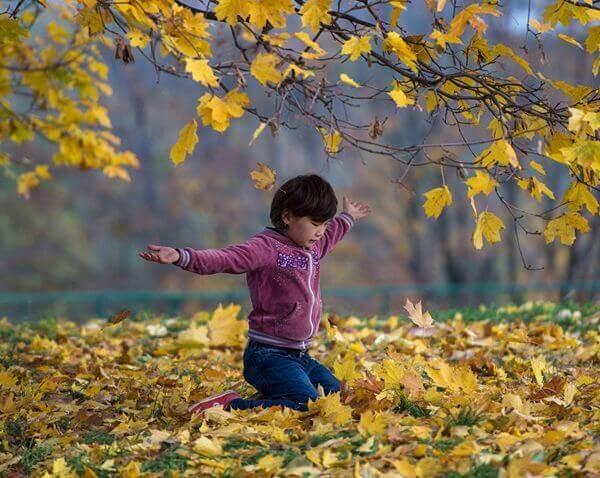 лучшие стихи об осени