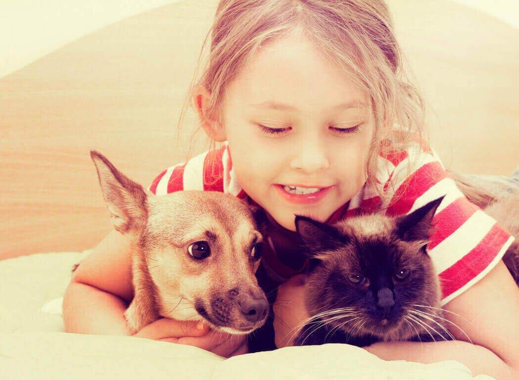 Соотношение возраста собаки, кошки и человека таблица сравнения