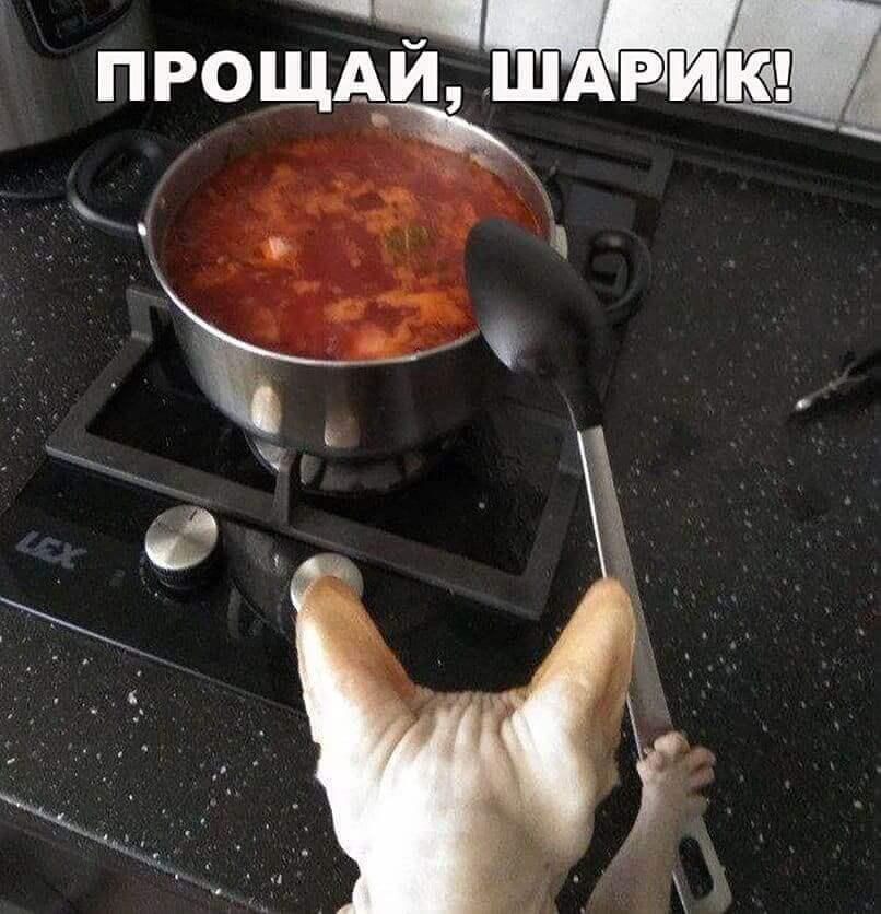 картинки приколы с надписями русская