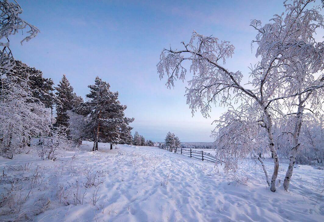 Лучшие зимние стихи
