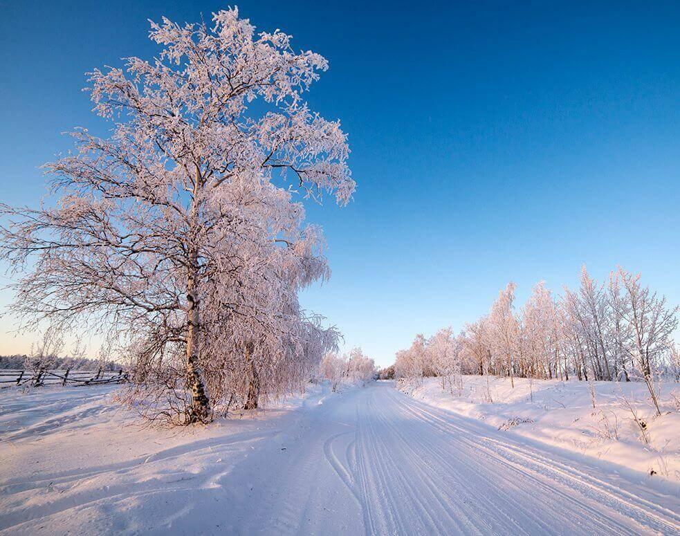 стихотворение про зиму
